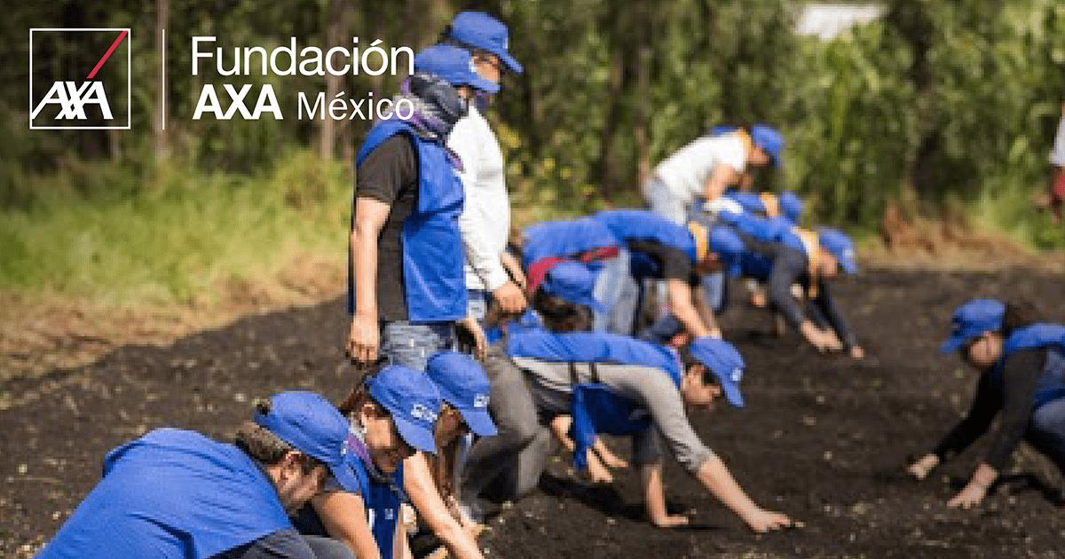 Fundacion AXA Reesponsabilidad social Blog